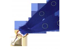 Panglica:  Uniunea Europeana