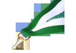 Panglica:  Verde / Alb
