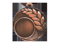 Medalie - E477 Br
